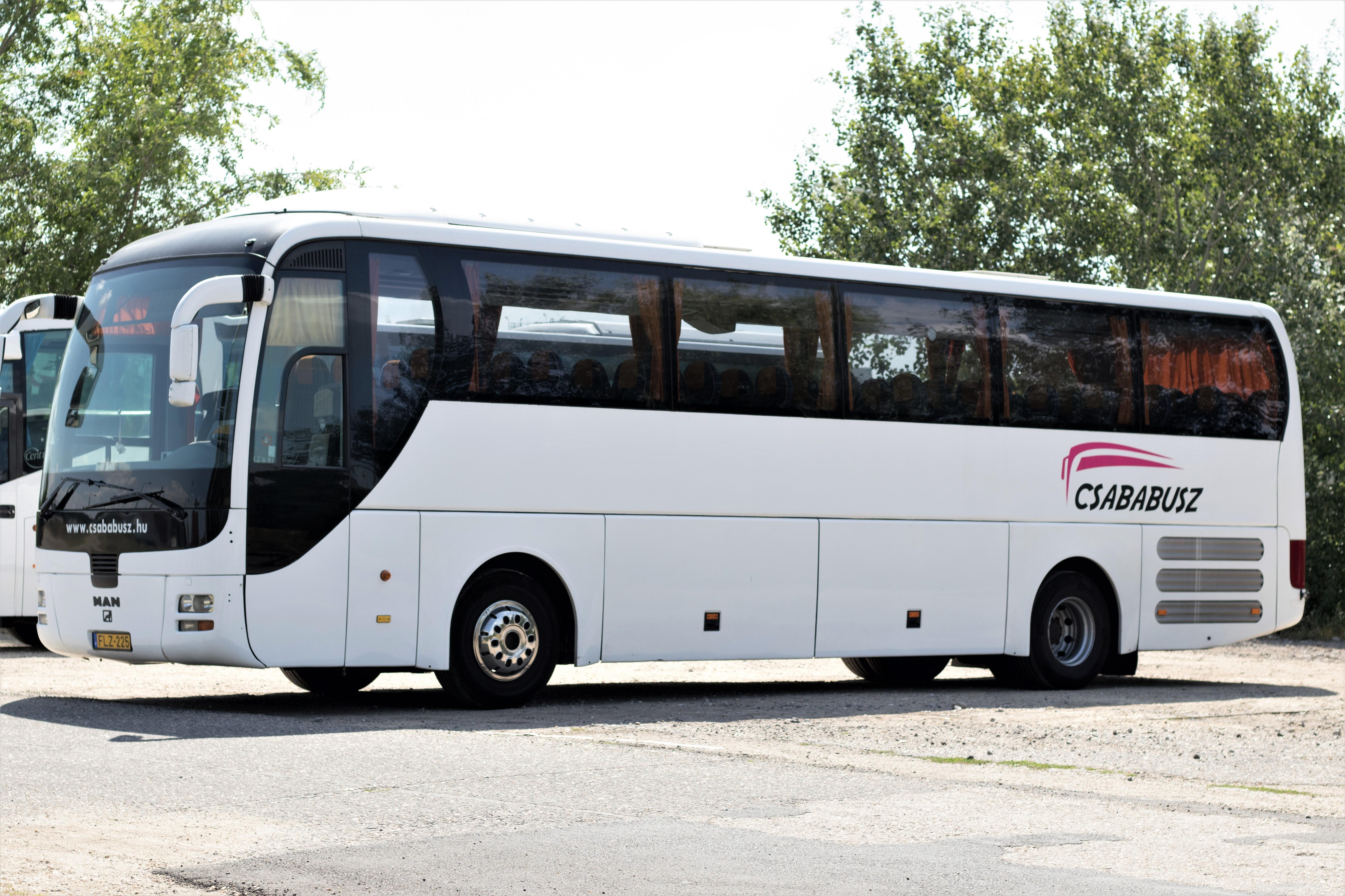 FLZ-225 (5)